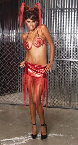 3 pc devil costume includes wire bra, skirt and horns