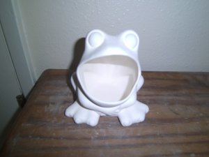 FR11 Frog Scrubber Holder