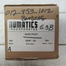 Numatics S30P-06 Slow Start Pneumatic Valve Auto Pilot 3/4 Inch 300 Max PSI S30P06 New