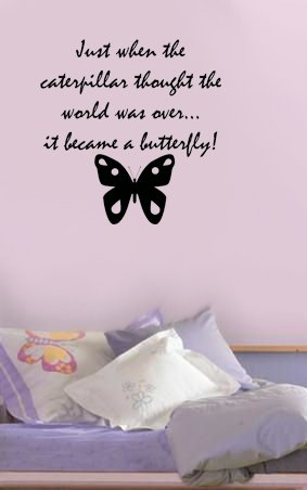 Butterfly's Change Wall Art Vinyl Decal