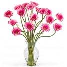 Gerber Daisy Liquid Illusion Pink