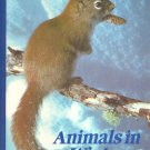 Animals In Winter - National Geographic Book