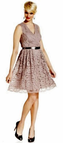 NWT SL Fashions Sleeveless Lace Dress Taupe  Retail $89.00