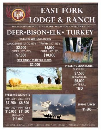 Guided Elk, Bison, & Deer Hunts
