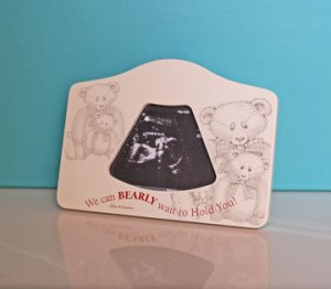 We can Bearly Wait to Hold You! 2D Ultrasound Picture Frame