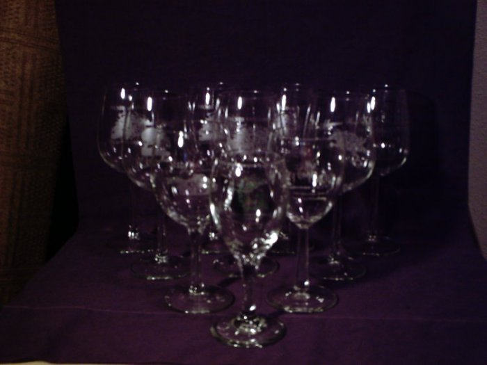 Collection of 10 Texas Wine Country Wine Glasses
