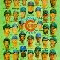 1969 CHICAGO CUBS TEAM FACSIMILE SIGNED 8x10 RP PHOTO ERNIE BANKS RON SANTO +