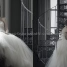 White Ivory Tulle Bridal Gown Bridal DressStrapless Jeweled Lace  Corset Wedding Dress Long Train