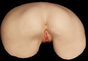 Juli Ashton Ultra Realistic Pussy and Ass