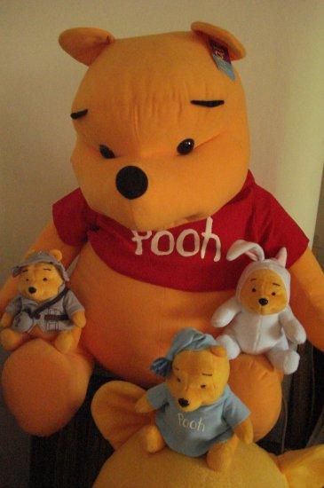 Brand New Big Cloth Pooh Bear