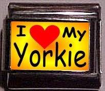 I Love (heart) My Yorkie Custom Italian Photo 9mm charm