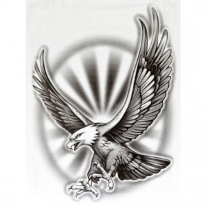 Og Abel Realistic Temporary Tattoo Quot Bald Eagle Quot