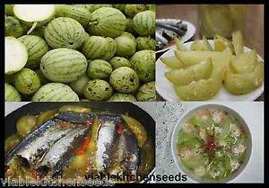 (100) small gourd,melon seed ,����ม��อย,dưa hư�ng nấu canh ,Vegetable seeds