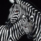 Zebra black velvet oil painting