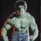 The incredible Hulk Bruce banner Lou Ferringo black velvet oil painting
