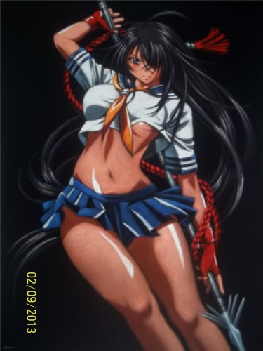 ikkitousen sexy kanu unchou anime black velvet oil painting. 18 by 24 inches