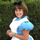 CUSTOM MADE ALICE IN WONDERLAND Blue and White Pinafore  Girls CHILD COSTUME 4-10