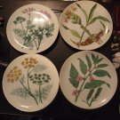 Set of 6 Horchow Botannical Plates