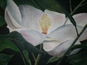 magnolia flower oil painting art print