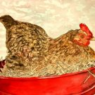 hen painting folk art print
