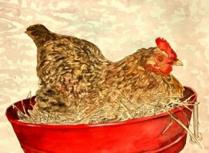 hen painting folk art print