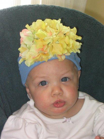 Bebe Yellow Hydrangea Blossom
