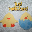 Chicks and Just hatched title die cut