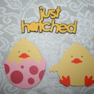 Chicks and Just hatched title Cricut die cut