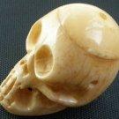 Tibet Yak Bone Hand Carved Yellow Human Skull Cranium Framework IZ01