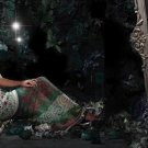 Indian / Pakistani Designer Wedding Bridal Light Work Saree Sari - X 1331