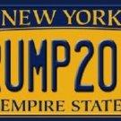 Trump 2016 Novelty Metal License Plate