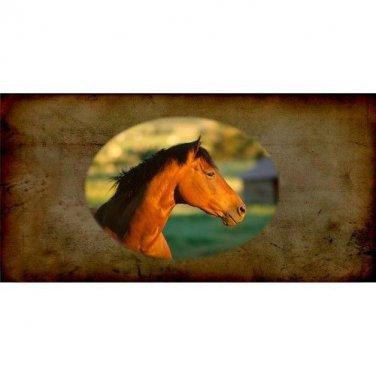 Quarter Horse Photo License Plate