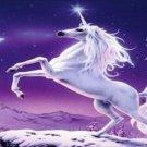 Unicorn Vanity Metal Novelty License Plate