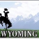 Wyoming State Background Novelty Metal License Plate