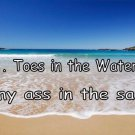 Toes In The Water My Ass In The Sand Beach Photo License Plate