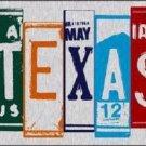 Texas License Plate Art Brushed Aluminum Metal Novelty License Plate
