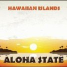 Hawaiian Islands Hawaii Blank State Background Novelty Metal License Plate