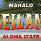 Leilani Hawaii State Background Novelty Metal License Plate