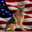 German Shepherd Dog On United States Flag Photo License Plate