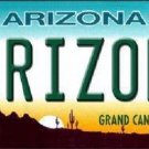 Arizona Novelty Metal License Plate