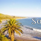 SoCal Beach Scene Photo License Plate