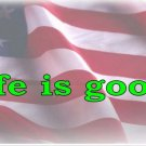 Life Is Good American Flag Photo License Plate