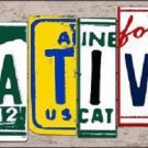 Native License Plate Art Wood Pattern Metal Novelty License Plate