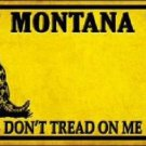 Montana Don't Tread On Me Novelty Metal License Plate