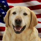 Yellow Lab Dog On United States Flag Photo License Plate