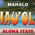 Hau' oli Hawaii State Background Novelty Metal License Plate