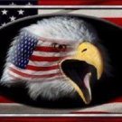 American Flag Eagle Novelty Metal License Plate