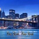 New York, New York Photo License Plate