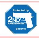 Protected By 2nd Amendment Security Photo License Plate