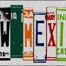 New Mexico License Plate Art Brushed Aluminum Metal Novelty License Plate